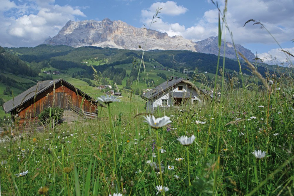Holidays in Val Badia close to San Martino in Badia
